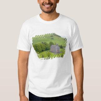 Roca de Dunamase, Irlanda. Vistas a y alrededor Remeras