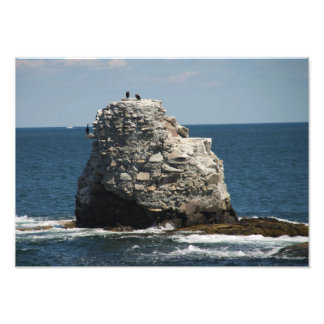 Roca de la ballena fotografías
