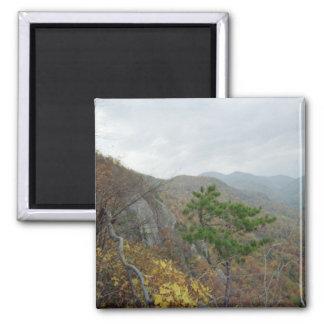 Roca de la chimenea, Carolina del Norte Imán Cuadrado
