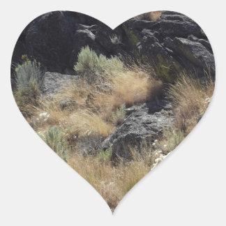 Roca de la lava pegatina en forma de corazón
