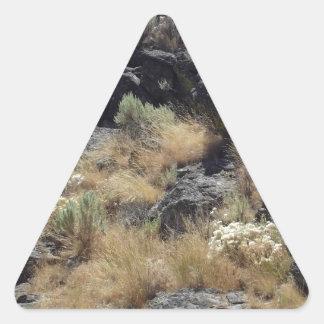 Roca de la lava pegatina triangular
