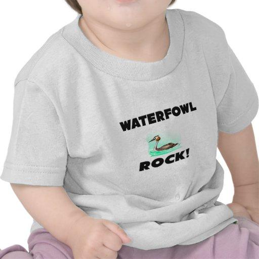 Roca de las aves acuáticas camiseta
