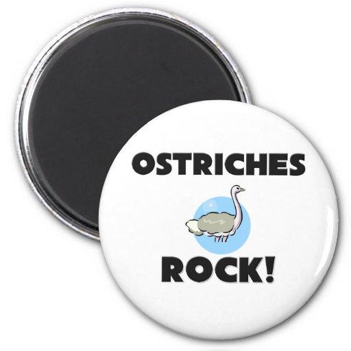 Roca de las avestruces imán para frigorífico