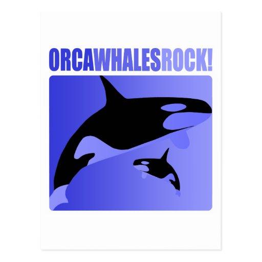 ¡Roca de las ballenas de la orca! Tarjeta Postal