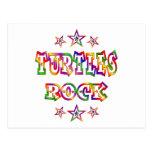Roca de las tortugas de la diversión tarjeta postal