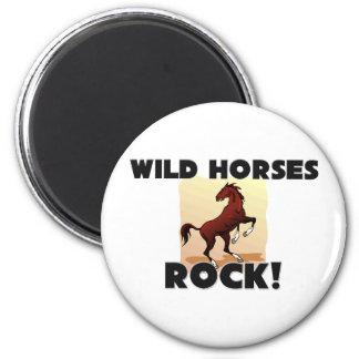 Roca de los caballos salvajes imanes para frigoríficos