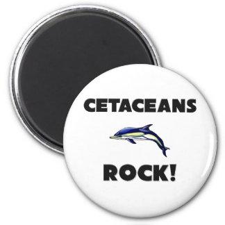 Roca de los cetáceos imán para frigorifico