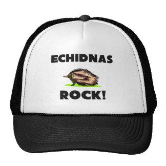 Roca de los Echidnas Gorra