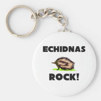 Roca de los Echidnas Llavero Redondo Tipo Pin