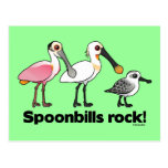 ¡Roca de los Spoonbills! Postal