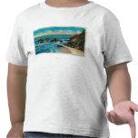 Roca del arco del punto del maxwell, camisetas