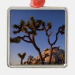 Roca del cactus y del casquillo de Cholla, yuca Adorno