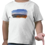 Roca del espejo en la salida del sol en el Pisgah Camisetas