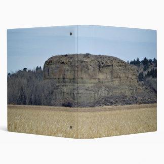 Roca del pilar de Pompeys