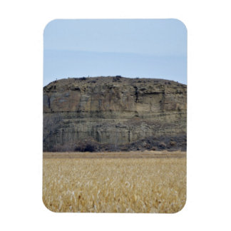 Roca del pilar de Pompeys Imán Rectangular