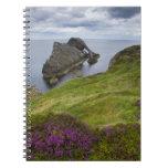 Roca del violín del arco, Portknockie, Escocia Notebook