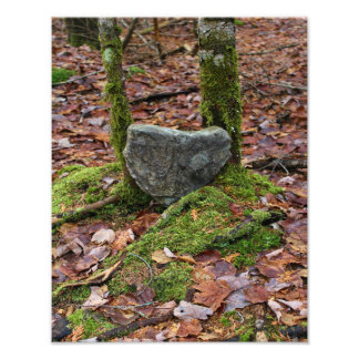 Roca en forma de corazón cojinete