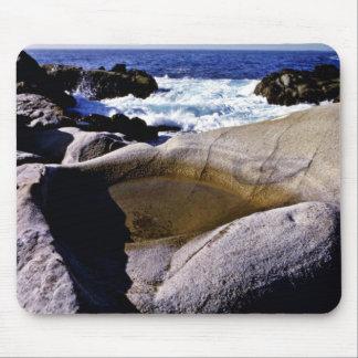 Roca esculpida - pinta. Coto del estado de Lobos Tapete De Ratones