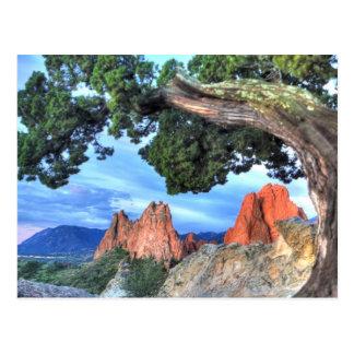 Roca gris enmarcada por el árbol tarjetas postales