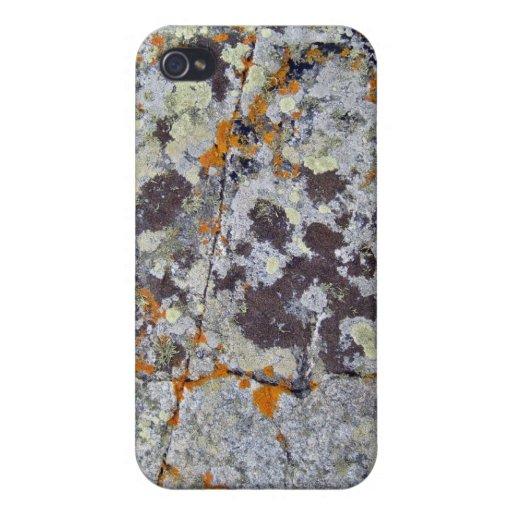 Roca negra con los liquenes anaranjados y blancos iPhone 4 fundas