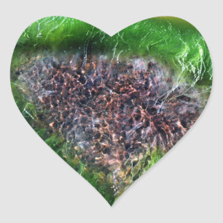 Roca subacuática pegatina corazon personalizadas