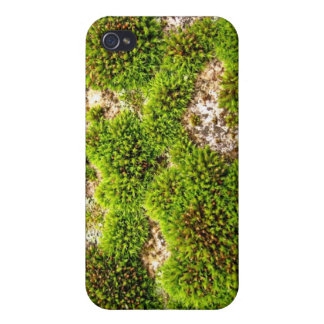 Roca verde del musgo iPhone 4/4S funda