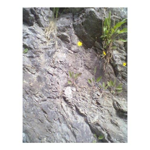 Roca y piedra tarjetones