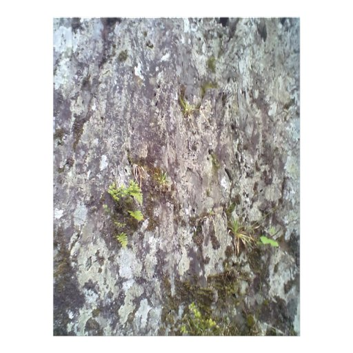 Roca y piedra tarjeta publicitaria