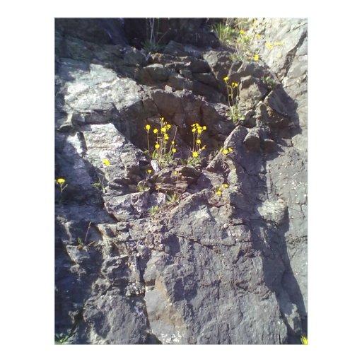 Roca y piedra flyer a todo color