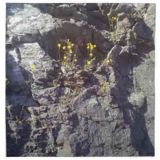 Roca y piedra servilletas imprimidas