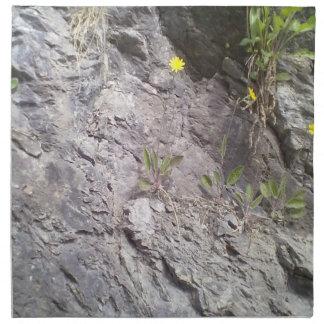 Roca y piedra servilleta