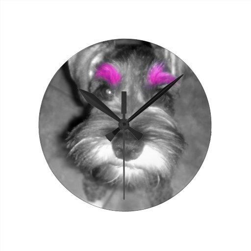 Roca y rollo rosados del perrito del Schnauzer min Reloj