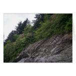 Rocas azules de la ruta verde de Ridge Tarjeton