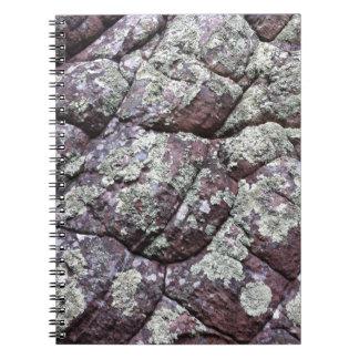 Rocas Bouldered con el musgo del liquen Libretas