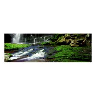Rocas cubiertas de musgo de la piscina de las casc tarjetas de negocios