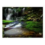 Rocas cubiertas de musgo de la piscina de las casc tarjetas postales