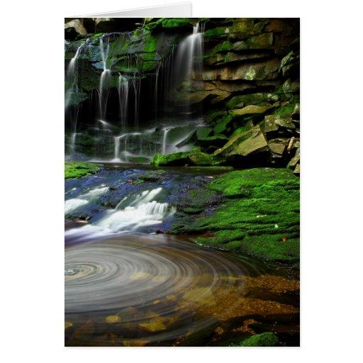 Rocas cubiertas de musgo de la piscina de las tarjeta pequeña