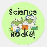 Rocas de la ciencia de las ranas etiqueta redonda