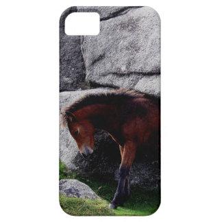 Rocas de la colina del hueso del potro del potro d iPhone 5 Case-Mate fundas