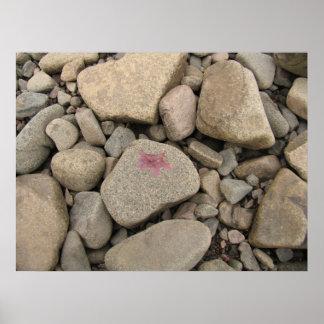 Rocas de Nueva Escocia Posters