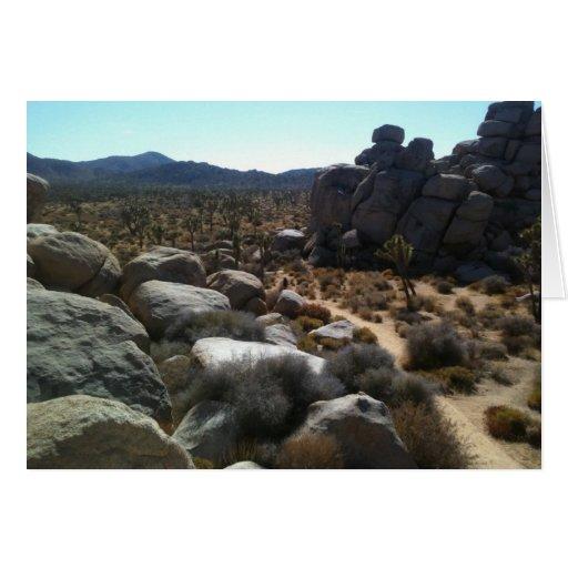 rocas en el JT Felicitaciones