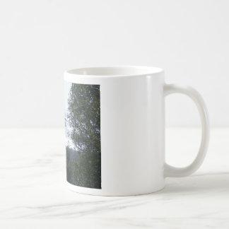 Rocas gemelas taza