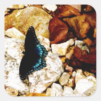 Rocas, hojas y mariposa pegatina cuadrada