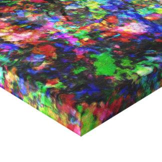 Rocas pintadas lienzo envuelto para galerías
