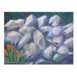 Rocas y flores tarjeta postal