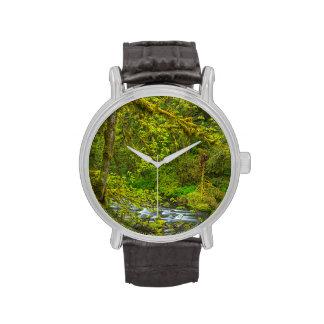 Rocas y línea de árboles cubiertas de musgo Eagle Relojes