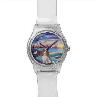 Rocas y mar - caballeros (BL2) Relojes De Pulsera