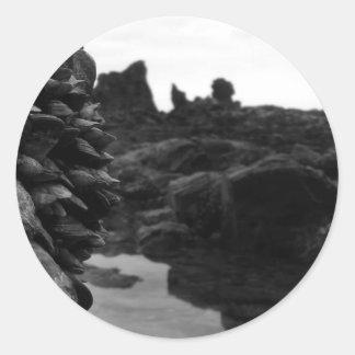 Rocas y músculos de BW de la playa de Newport Pegatina Redonda