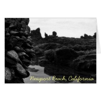 Rocas y músculos de BW de la playa de Newport Tarjeta De Felicitación