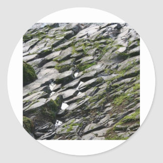 Rocas y musgo pegatina redonda
